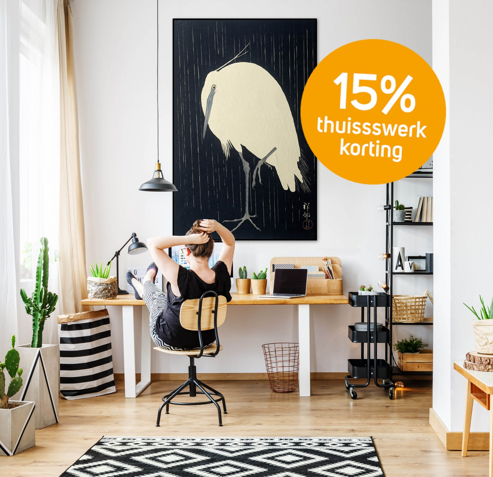 Young freelance woman working remotely at designer home in cozy white office room with pendant lamps, white wall, big window, comfy couch and aloe plant standing on wooden retro table